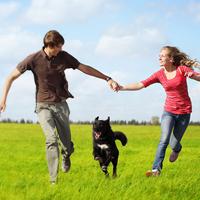 Die besondere Rolle des Hundes wird am 10./11. Juni 2017 wieder als Tag des Hundes gefeiert. Bundesweit werden der VDH und seine Mitgliedsvereine an einem Aktionswochenende vielfältige Aktivitäten rund um […]